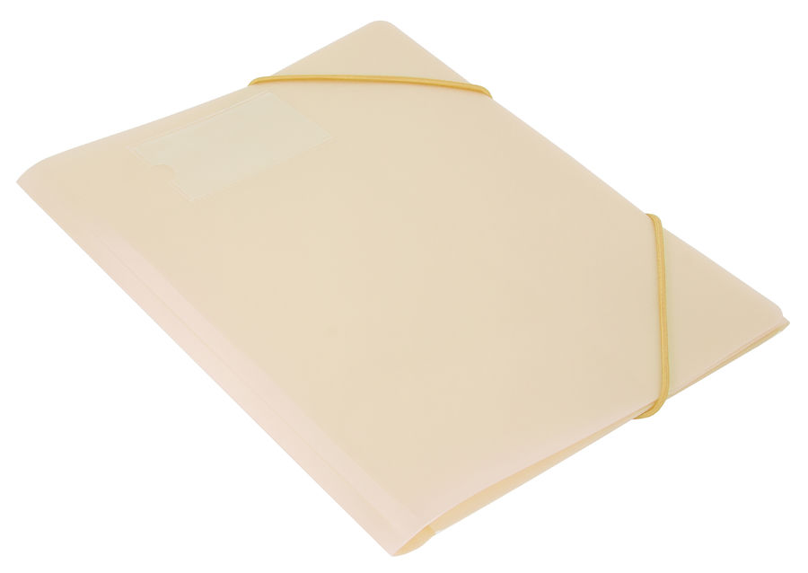 Папка на резинке Бюрократ Gems GEMPR05CREAM A4 пластик кор.30мм 0.5мм кремовый жемчуг карман для виз