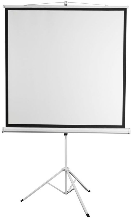 Экран  Digis Kontur-D DSKD-1104,  172х172 см, 1:1,  напольный