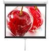 Экран  Digis Optimal-D DSOD-4304,  240х180 см, 1:1,  настенно-потолочный вид 1