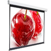 Экран  Digis Electra-F DSEF-1105,  180х180 см, 1:1,  настенно-потолочный вид 2