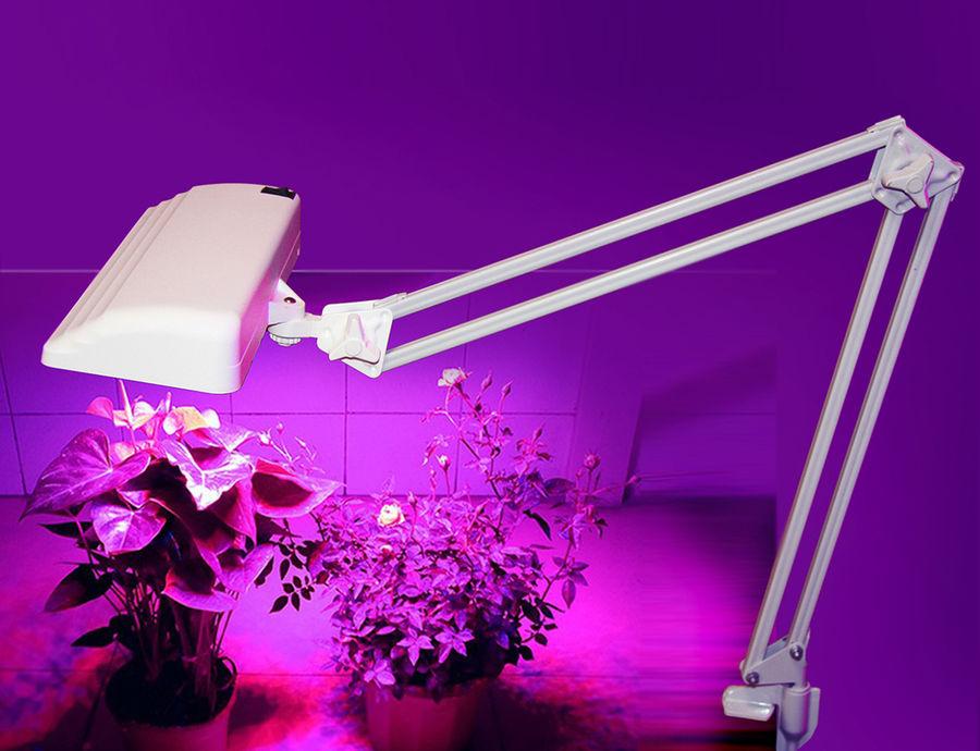 Светильник (Фито) ТРАНСВИТ Дельта-П С32-025 на струбцине,  12Вт,  белый