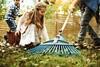 Грабли садовые Gardena 03099-30.000.00 вид 7