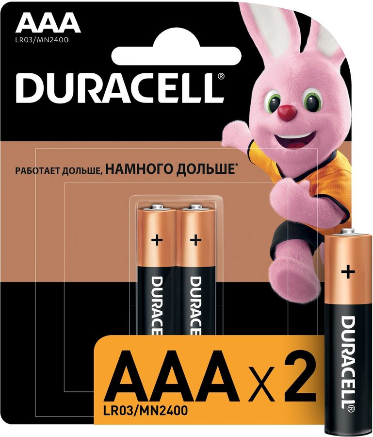 AAA Батарейка DURACELL Basic CN LR03-2BL MN2400,  2 шт.