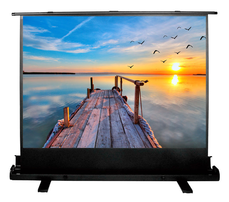 Экран CACTUS FloorExpert CS-PSFLE-200X113,  200х113 см, 16:9,  напольный