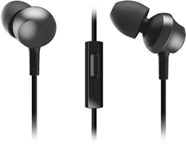 Наушники с микрофоном PANASONIC RP-TCM360GCK, 3.5 мм, вкладыши, черный