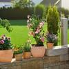 Набор полива Gardena 13000-34.000.00 вид 3