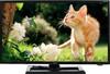 """LED телевизор BBK 22LEM-1005/FT2C  """"R"""", 22"""", FULL HD (1080p),  черный вид 1"""