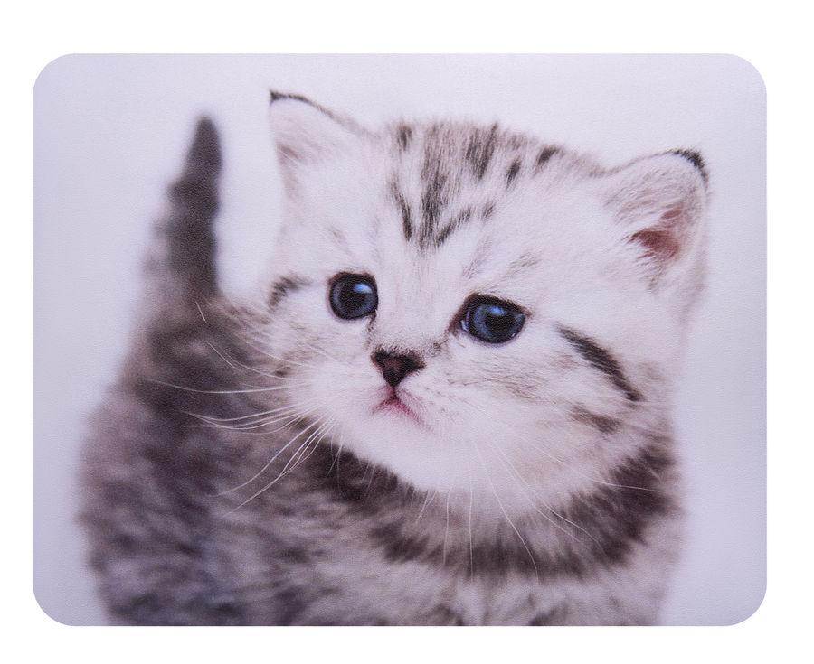 Коврик для мыши BURO BU-M40087,  рисунок/котенок