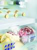 Встраиваемый холодильник LIEBHERR SBS 66I3 (SICN 3356 + ICBN 3366) белый вид 5