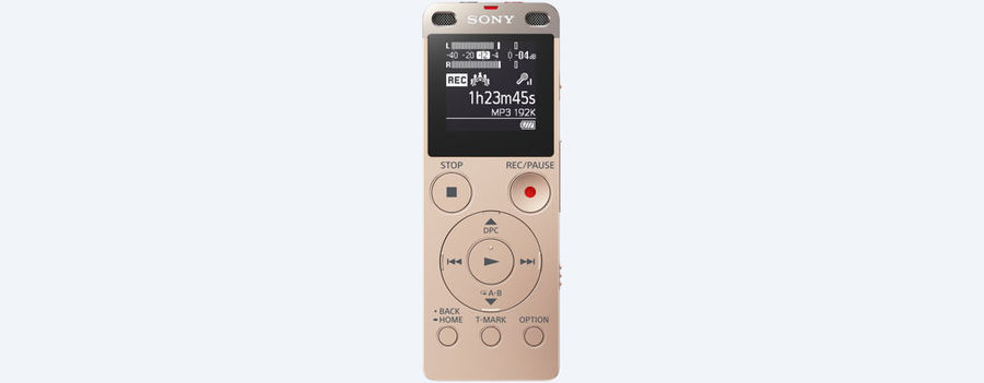 Диктофон SONY ICD-UX560 4 Gb,  золото [icdux560n.ce7]