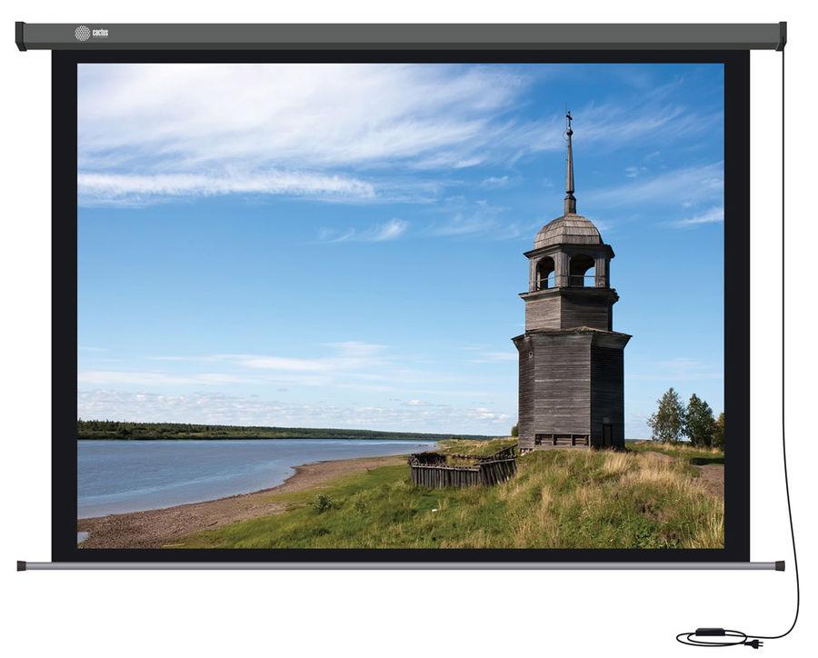 Экран CACTUS Professional Motoscreen CS-PSPM-152X203,  203х152 см, 4:3,  настенно-потолочный