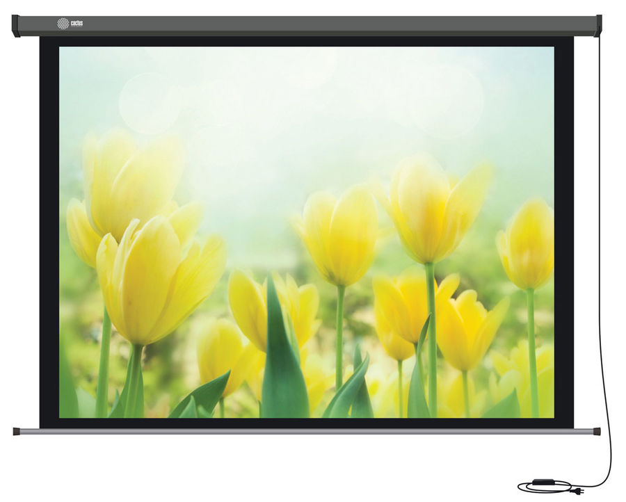 Экран CACTUS Professional Motoscreen CS-PSPM-183x244,  244х183 см, 4:3,  настенно-потолочный
