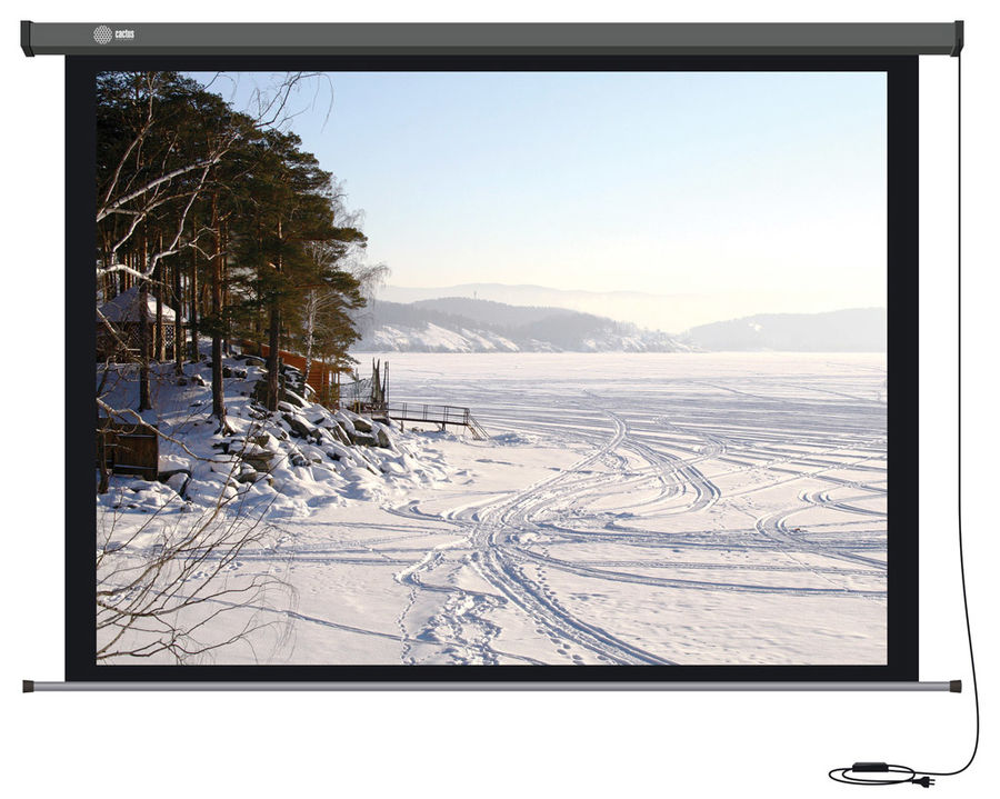 Экран CACTUS Professional Motoscreen CS-PSPM-206x274,  274х206 см, 4:3,  настенно-потолочный