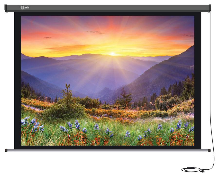 Экран CACTUS Professional Motoscreen CS-PSPM-149x265,  265х149 см, 16:9,  настенно-потолочный