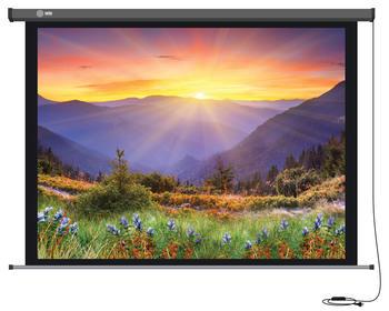 Экран LUMIEN Master Picture LMP-100117