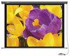 Экран CACTUS Professional Motoscreen CS-PSPM-168x299,  299х168 см, 16:9,  настенно-потолочный вид 1