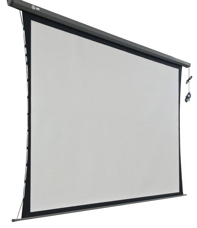 Экран CACTUS Professional Tension Motoscreen CS-PSPMT-168x299,  299х168 см, 16:9,  настенно-потолочный