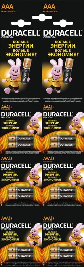 AAA Батарейка DURACELL Original LR03-2BL MN2400,  12 шт.