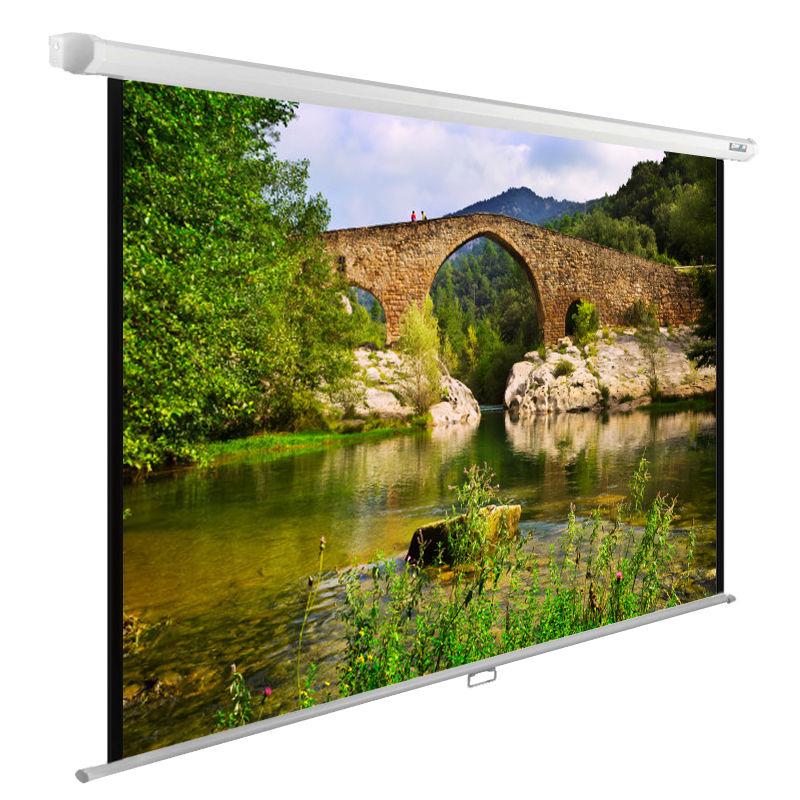Экран CACTUS WallExpert CS-PSWE-220x165-WT,  165х220 см, 4:3,  настенно-потолочный белый