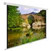 Экран CACTUS WallExpert CS-PSWE-220x165-WT,  165х220 см, 4:3,  настенно-потолочный белый вид 1