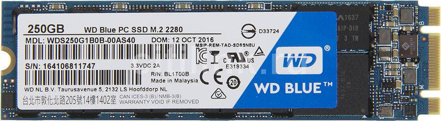 Накопитель SSD WD WD Blue WDS250G1B0B 250Гб, M.2, SATA III
