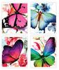 Тетрадь Silwerhof 811425-55 48л. клет. A5 Butterflies 4диз. мел.карт. выб.лак скрепка вид 1