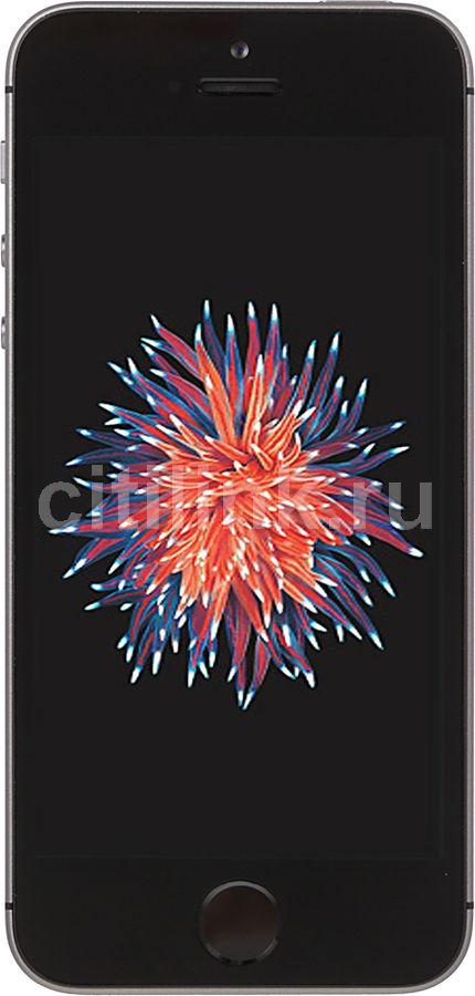 Смартфон APPLE iPhone SE 128Gb, MP862RU/A, серый смартфон apple iphone se 128gb silver mp872ru a