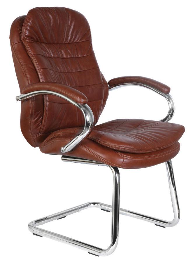 Кресло БЮРОКРАТ T-9950AV, на полозьях, кожа/кожзам [t-9950av/brown]
