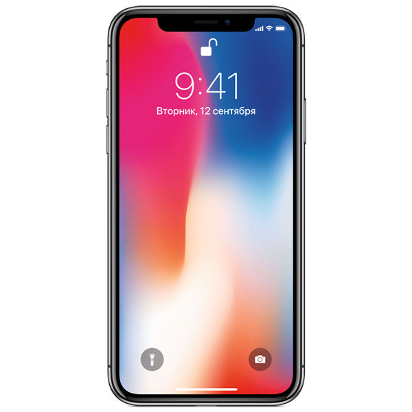 Смартфон APPLE iPhone X 64Gb,  MQAC2RU/A,  серый космос