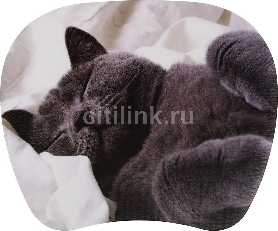 Коврик для мыши PC PET MP-TOM TURBO MP-TMG Cat рисунок [mp-tmgc turbo (grey cat)]