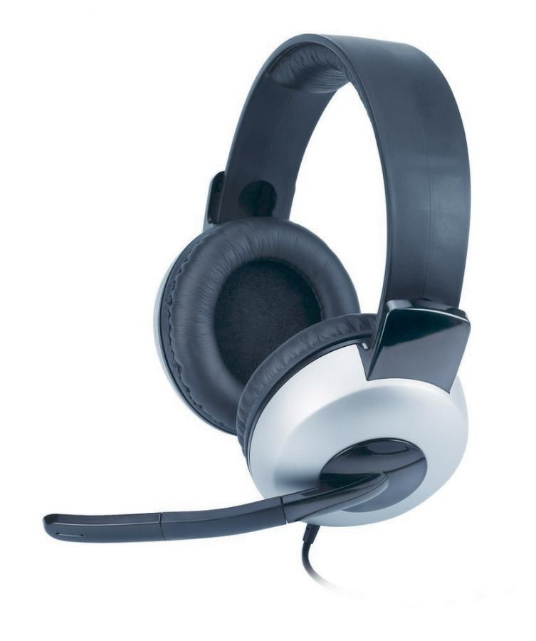 Наушники с микрофоном GENIUS HS-05A,  31710011100,  мониторы, серебристый  / черный