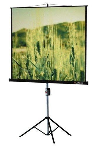 Экран LUMIEN Master View LMV-100102,  153х153 см, 1:1,  напольный