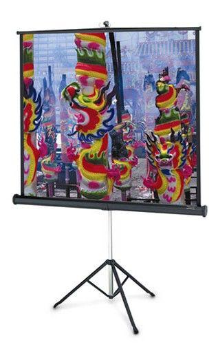Экран PROJECTA Professional,  152х152 см, 1:1,  напольный