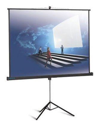 Экран PROJECTA ProView,  152х152 см, 1:1,  напольный [10430112]