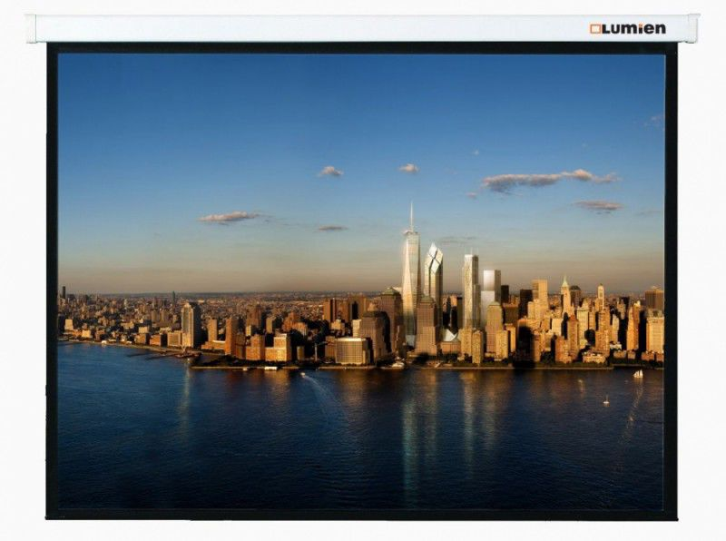 Экран LUMIEN Master Picture LMP-100106,  244х244 см, 1:1,  настенно-потолочный