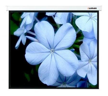 Экран LUMIEN Master Control LMC-100126,  280х280 см, 1:1,  настенно-потолочный белый