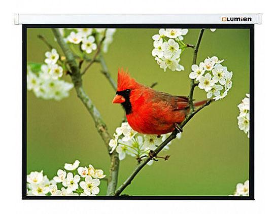 Экран LUMIEN Master Picture LMP-100107,  305х305 см, 1:1,  настенно-потолочный