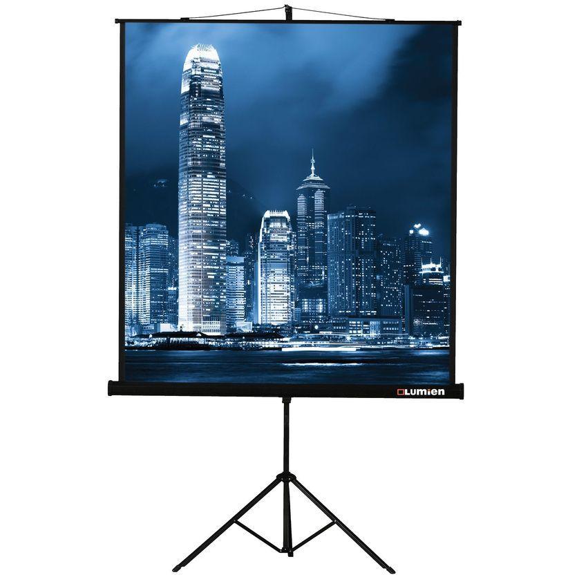 Экран LUMIEN Master View LMV-100104,  213х213 см, 1:1,  напольный
