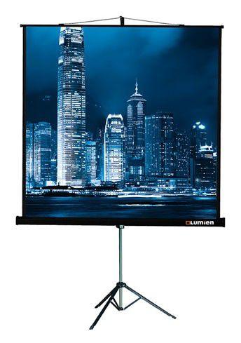 Экран LUMIEN Master View LMV-100111,  220х220 см, 1:1,  напольный