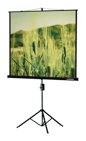 Экран LUMIEN Master View LMV-100113,  165х220 см, 4:3,  напольный