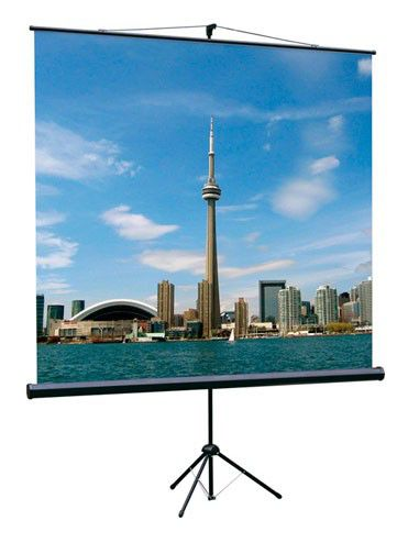 Экран LUMIEN Eco View LEV-100105,  160х160 см, 1:1,  напольный