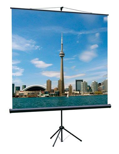 Экран LUMIEN Eco View LEV-100102,  180х180 см, 1:1,  напольный
