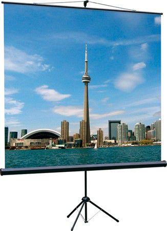 Экран LUMIEN Eco View LEV-100103,  200х200 см, 1:1,  напольный