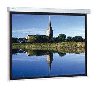 Экран PROJECTA Compact Electrol,  220х220 см, 1:1,  настенно-потолочный [10101979]