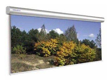 Экран PROJECTA Master Electrol,  400х350 см, настенно-потолочный [10130232]