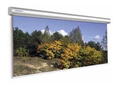 Экран PROJECTA Master Electrol,  500х300 см, настенно-потолочный [10130236]