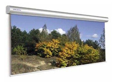 Экран PROJECTA Master Electrol,  400х300 см, настенно-потолочный [10130230]