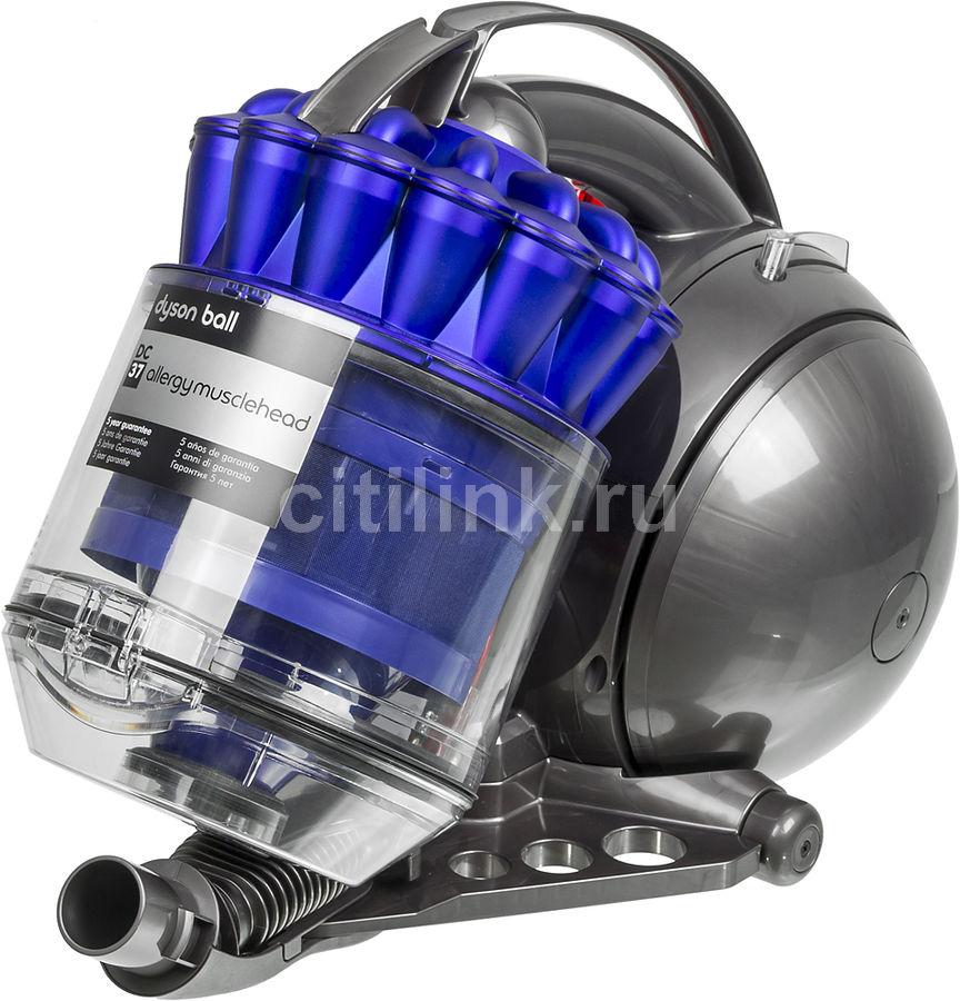 Пылесос DYSON DC37 Allergy Musclehead, 1300Вт, серый/синий