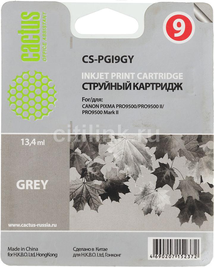 Картридж CACTUS CS-PGI9GY серый