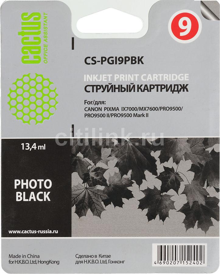 Картридж CACTUS CS-PGI9PBK фото черный
